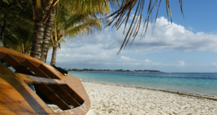 Mauritius 310x165 - Luxusvilla auf der Insel Mauritius wird versteigert